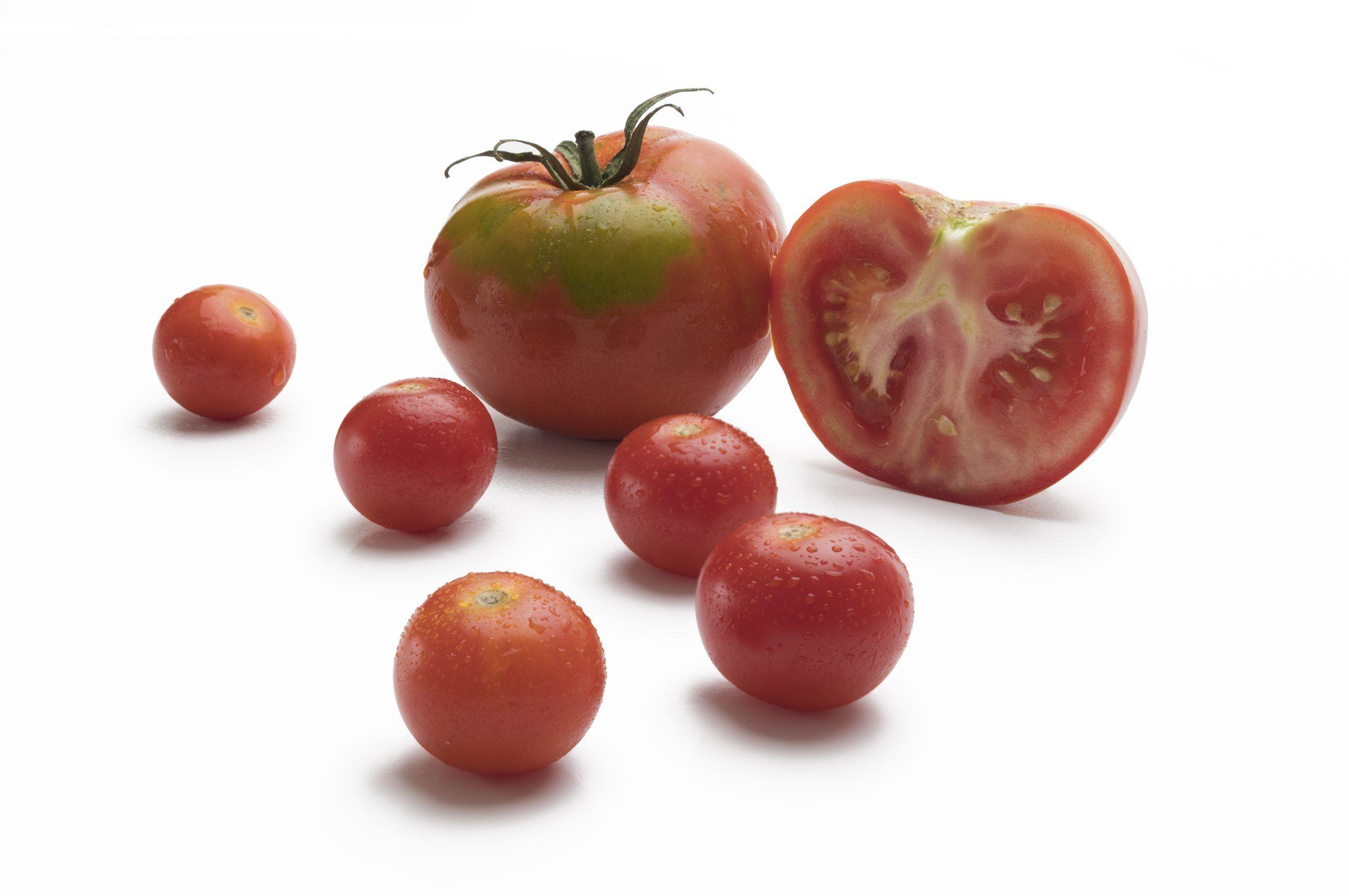 tomate-foto